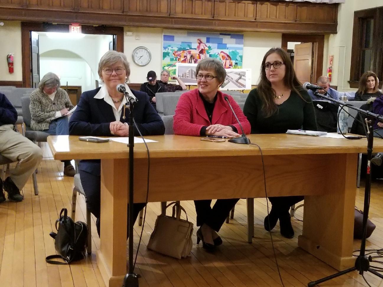 Rep. Johnson, Rep. Orange, Sen. Flexer discuss Windham needs with Town Council