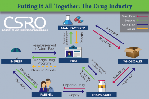 Putting it All Together: The Drug Industry